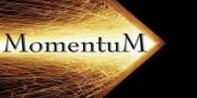 Leadership Training Program - Teams with Momentum